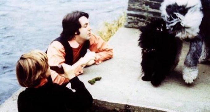 The Chemistry of Lennon & McCartney by Ruth McCartney