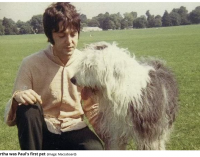 The dogs who inspired Sir Paul McCartney's chart-topping songs – Liverpool Echo